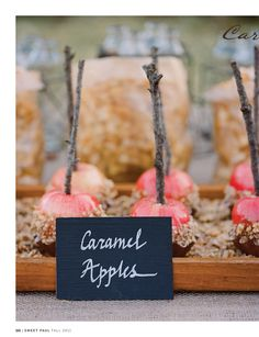 caramel apples...cute desert bar for a fall dinner party.  make a few different kinds with different toppings.