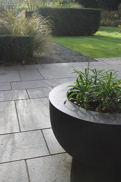 beautiful smooth stone and slate tones against soft, plush, green