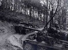 """Tank Destroyers in Hürtgen Forest"" 803rd Tank Destroyer Battalion Southwest of Düren 3rd Armored Divisiion"
