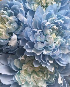 Baby blue and cream crepe paper flowers, created for a local wedding shop #giantpaperflowers #crepepaper #handmade #paper #cartotecnicarossi #weddingdecor #windowdisplay #wedding #weddinginspiration #interiorstyling #homedecor