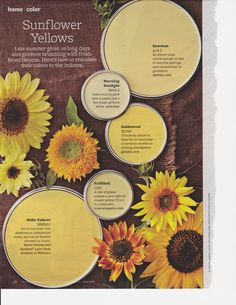 Warm and sunny Sunflower yellows!!
