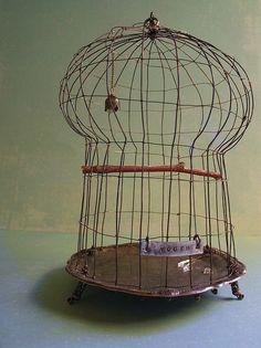 birdcage no.5 - wire & tray