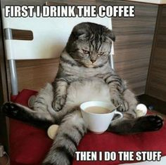 First I drink the coffee then I do the stuff. True.