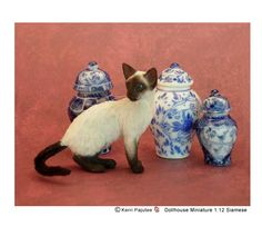 Siamese Kerri Pajutee... I want this kitty