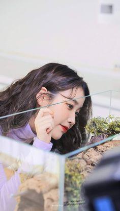#IU#Eight📷:bianwuye Korean Actresses, Korean Actors, Korean Celebrities, Celebs, Kpop Girl Bands, Sung Kyung, Iu Fashion, K Idols, Korean Singer