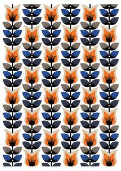 Tulips (Nadia Taylor)