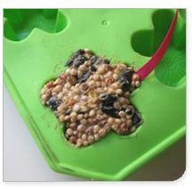 make bird feeders with silicone ice mold--we just happen to have one we've never used