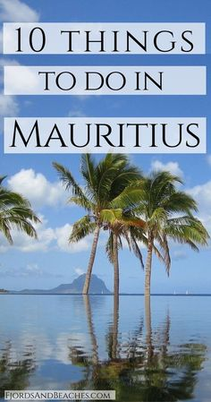 Top 10 Things to do in Mauritius what to do in Mauritius, visit Mauritius, Mauritius guide https://hotellook.com/countries/mauritius?marker=126022.pinterest