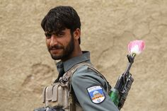 An Afghan policeman carries a poppy flower in the barrel of his gun, in the Maiwand district of Kandahar province, southern Afghanistan April 9, 2012.  [Credit : Baz Ratner/Reuters]