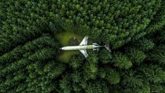 SkyPixel's jaw-dropping drone photos of the year: The jetliner home of electrical engineer Bruce Campbell in the forest of Oregon. This drone shot...