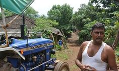 Indian farmers fight against climate change using trees as a weapon | Global Development Professionals Network | The Guardian