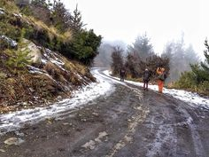 Ascending into Snowy Patagonia Winter ~ ExpedEvac Dirt Road Anthem, Forest Trail, The Other Guys, Local Artists, Trip Planning, Patagonia, Muse, Travel Tips, Around The Worlds