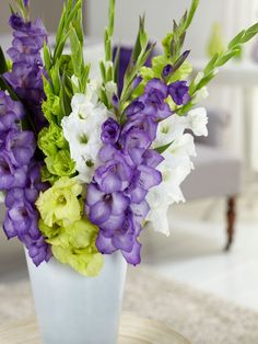 A fabulous color combination of purple, green, and white, this Gladiolus Mixture is a must-have for any summer garden. Extremely easy to grow and so rewarding, Gladiolus are famous for their bright color and make for amazing summer bouquets. Garden Bulbs, Planting Bulbs, Planting Flowers, Flowers Garden, Bulb Flowers, Large Flowers, Pink Flowers, Birth Flowers, Exotic Flowers