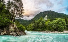 Download wallpapers mountain landscape, forest, mountain river, mountains, Alps, Slovenia, Bovec