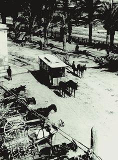Tranvía de mulas. Fotografía del Archivo Municipal de Alicante.