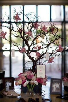 Love this wishing tree! For weddings, baby showers, or bridal showers. Love the bird cage!