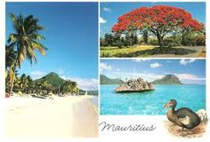 Mauritius. Join us in Mauritius for free, we can help you get there http//www.tsft.org