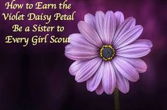 Earn the Violet Daisy Petal Be A Sister to Every Girl Scout. Easy activity!