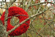 Floral art design by Niina Minkkinen-Westerlund ©