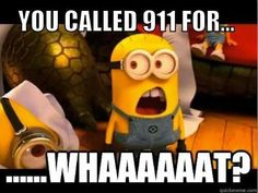 You called for whaaaaat!?!? 911 minions!
