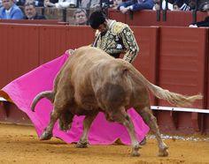 Triunfos y grandes faenas de este año en los ruedos españoles. Fotos: ABC y Agencias