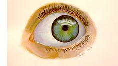 9.3 olho