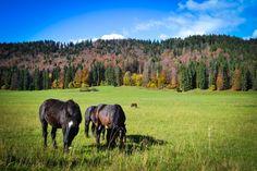 National Park Muránska Planina, Veľká Lúka, Slovakia