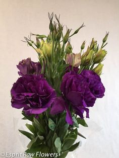 Lisianthus purple Lavender Flowers, Cut Flowers, Glass Vase, Purple, Blue, Seasons, Gallery, Plants, Roof Rack