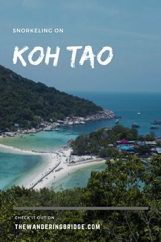 Tips for snorkeling on Koh Tao. Thailand's most popular snorkeling destination. #Thailand #KohTao #SnorkelinginThailand