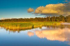 Weerribben Wieden Nationaal Park Nederland