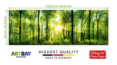 Forest Poster XXL, Panoramic Art Print - 46.8 x 16.5 Inch (118.8 x 42 cm), sun-flooded, magic, native forest |Wallpaper, High-resolution wall decoration by ARTBAY