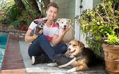 Lance Bass with Dingo , Foster and Lily
