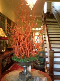 Kumquat Lacquer on Curly Willow #lacquer #amyhowardathome #diy