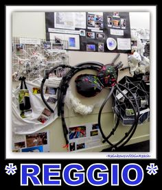 Reggio Documentaion in Early Childhood Setting