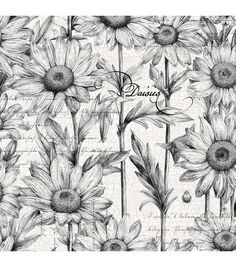 Tim Coffey Premium Quilt Fabric Daisies Black