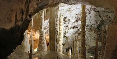 """La Grotta di Frasassi si trova nella regione delle Marche. Con una lunghezza di 13 km,  contiene in particolare la stupenda """"sala delle candele"""" (in foto), la  folgorante """"sala bianca"""" (strati di pura calcite), la sala dell'Orsa """" sorprendente (che deriva il suo nome da una scultura naturale), e la  gigantesca """"Sala dell'Infinito"""". Queste si dividono in stalagmiti (colonne che crescono progredendo dal basso verso l'alto) e stalattiti (che invece scendono dal soffitto delle cavità)."""