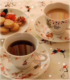 Shinzi Katoh Tea Collection