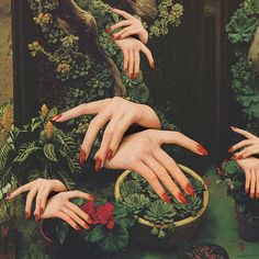 Touch Plants by Mariano Peccinetti