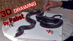 3D Drawing of a Lifelike Snake | 3D Painting Optical Illusion! - YouTube Stephen Pabst