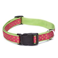 East Side Collection Nylon Polka Dot Dog Collar, 10-16-Inch, Raspberry - http://www.thepuppy.org/east-side-collection-nylon-polka-dot-dog-collar-10-16-inch-raspberry/
