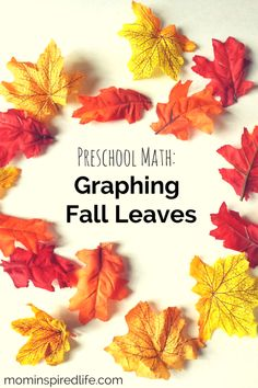 397 best fall trees and leaves theme for preschool and kindergarten