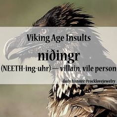 Viking insults :) Your daily cuss word replacements.