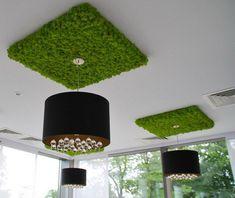 "Результат пошуку зображень за запитом ""декоративный мох в интерьере"" Moss Wall Art, Moss Art, Moss Decor, Living Room Tv Unit Designs, Mid Century Modern Lighting, London Design Festival, Retro Lighting, Green Home Decor, Co Working"