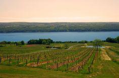 1. Finger Lakes