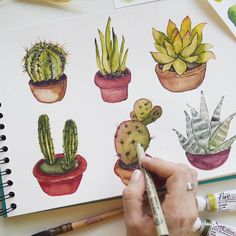 """Gefällt 1,813 Mal, 6 Kommentare - WG WATERCOLOUR GALLERY (@watercolour_gallery) auf Instagram: """"Love cactus!!! @koo.alina ・・・ Switching my mood to today  Inspired by #pinterest Which…"""""""