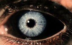 ....reapers eyes.