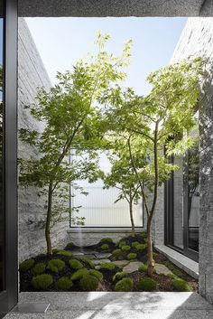 The Granite-Clad Armadale Residence by B.E Architecture - Design Milk The Granite-Clad Armadale Residence by B.E Architecture - Design Milk - private Japanese garden Courtyard Landscaping, Modern Courtyard, Courtyard Design, Internal Courtyard, Courtyard House, Modern Landscaping, Patio Design, Indoor Courtyard, Atrium Garden