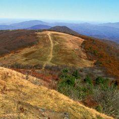 Appalachian Trail: Sams Gap to Big Bald Mountain | WNC Magazine
