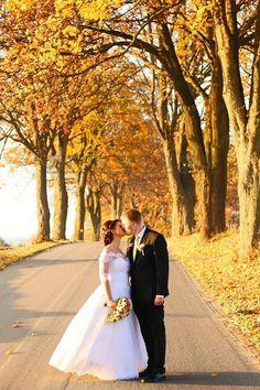 Květinový ateliér V Ráji, Lázně Bohdaneč: Svatební dekorace v bílé, růžové a zelené