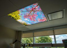Hospital Critical Care Unit in Irvine, CA - Sky Mural - Thinking Pink - Fluorescent Light Cover